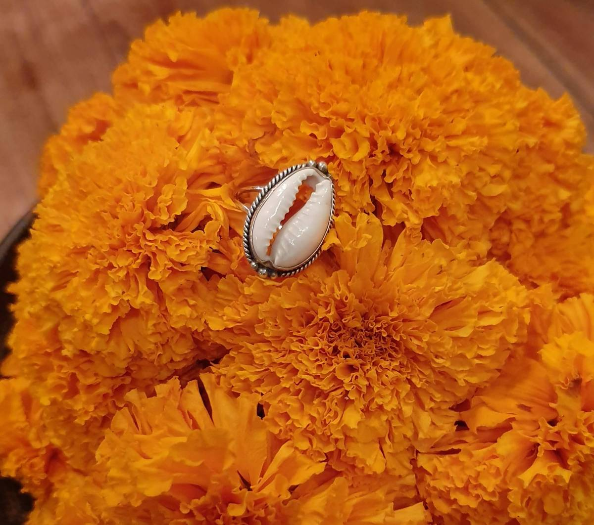 Muschelring Cowrie Muschel Ring 925 Silber aus Bali Boho Silberring Ibiza Style Strand Schmuck