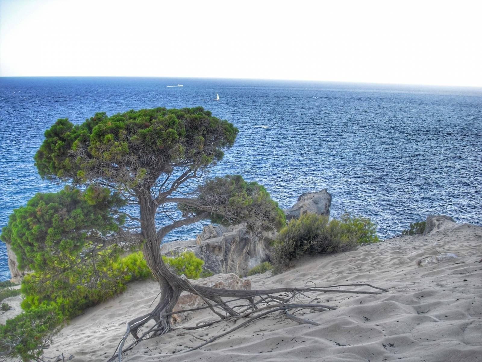 Atlantis Ibiza Magische Natur